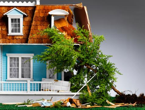 Fallen Tree「Model house damaged by fallen tree, close-up」:スマホ壁紙(19)