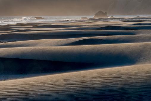 Cape Sebastian「Cape Sebastian Beach Dunes Oregon Coast」:スマホ壁紙(7)