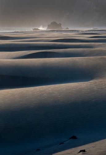 Cape Sebastian「Cape Sebastian Beach Dunes Oregon Coast」:スマホ壁紙(9)