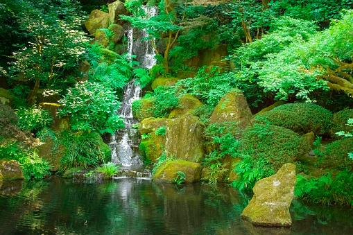 里山「日本の禅庭の鯉の池に注いで優しく滝」:スマホ壁紙(0)