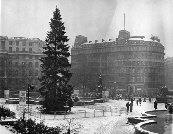 Trafalgar Square「Christmas Tree」:写真・画像(2)[壁紙.com]