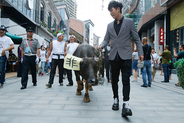 七夕「Hauling Cows To Woo Love During Traditional Qixi Festival」:写真・画像(11)[壁紙.com]