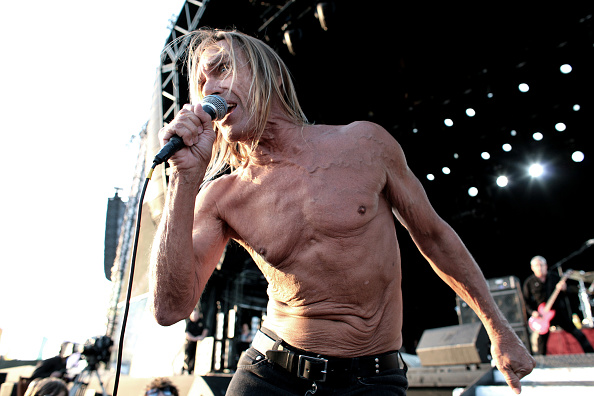 Complexity「Iggy Pop」:写真・画像(8)[壁紙.com]