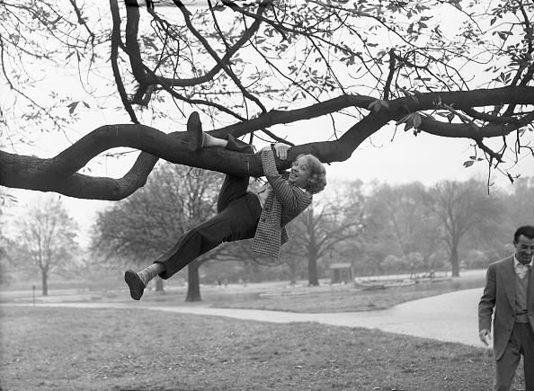 Tree「Joy Nichols」:写真・画像(15)[壁紙.com]