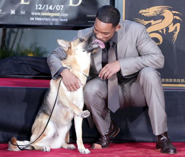 俳優 ウィル・スミス「Will Smith Hand and Footprint Ceremony at Grauman's Chinese Theatre」:写真・画像(13)[壁紙.com]