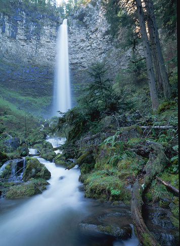 Umpqua National Forest「Towering Watson Falls in Umpqua National Forest」:スマホ壁紙(12)