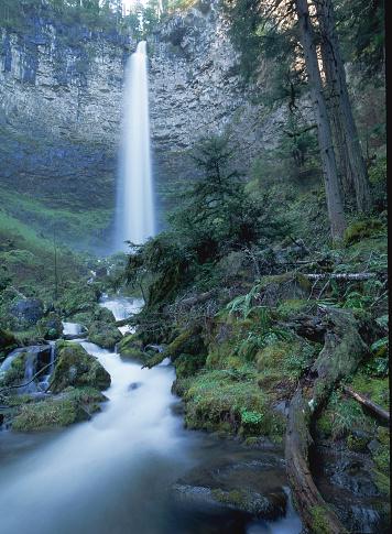 Umpqua National Forest「Towering Watson Falls in Umpqua National Forest」:スマホ壁紙(12)