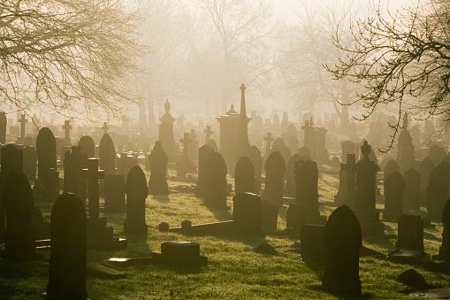 Religion「Misty Cemetery」:スマホ壁紙(19)