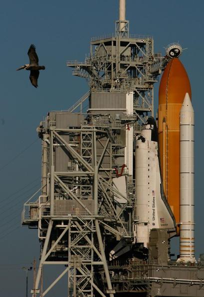 Space Shuttle Endeavor「NASA Prepares For Launch Of Space Shuttle Endeavour」:写真・画像(9)[壁紙.com]