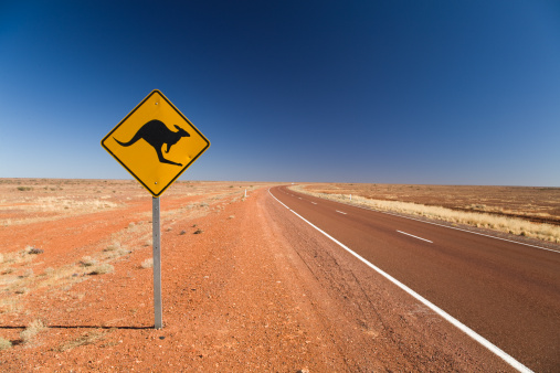 Kangaroo「Kangaroo road sign on the Stuart Highway in South Australia, Australia, 2008」:スマホ壁紙(2)