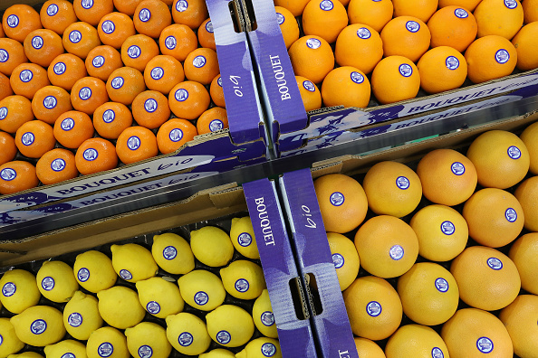 Orange - Fruit「Fruit Logistica Agricultural Trade Fair」:写真・画像(4)[壁紙.com]