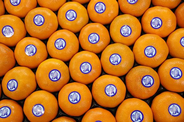 Orange - Fruit「Fruit Logistica Agricultural Trade Fair」:写真・画像(7)[壁紙.com]