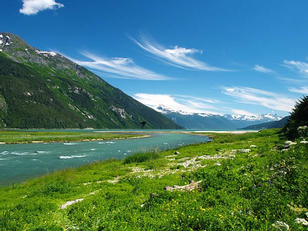 Chilkoot River:スマホ壁紙(壁紙.com)