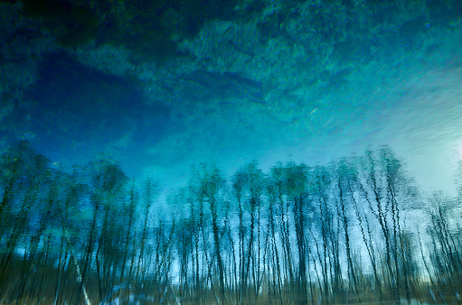 Shallow「Blurred trees sun on lake transparent clear blue water surface」:スマホ壁紙(9)