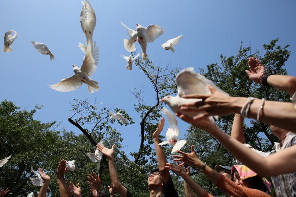 Releasing「Japan Marks 68th Anniversary Of WWII Surrender」:写真・画像(14)[壁紙.com]
