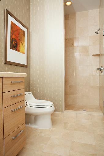 Pompano Beach「Toilet, shower and drawers in modern bathroom」:スマホ壁紙(2)
