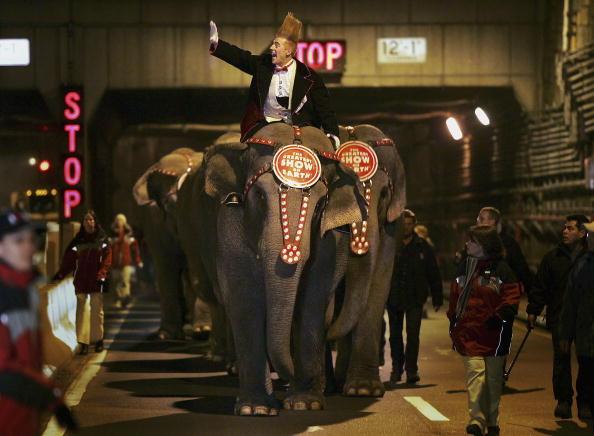 Chris Hondros「Elephant Procession Walks Through New York Tunnel」:写真・画像(19)[壁紙.com]