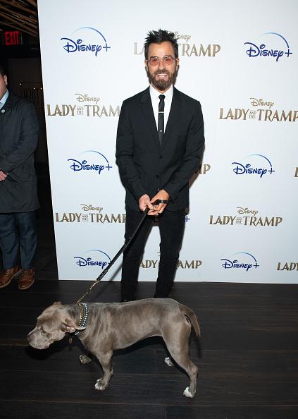 "上映会「Disney+'s ""Lady And The Tramp"" New York Screening」:写真・画像(17)[壁紙.com]"