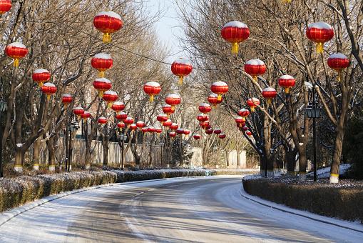 Chinese Lantern「Villa snow」:スマホ壁紙(8)