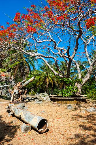 Northern Mariana Islands「War memorial with rusty guns, Saipan, Northern Marianas」:スマホ壁紙(18)