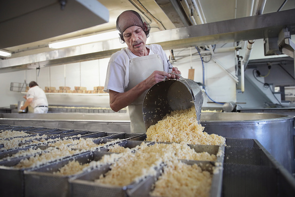 Wisconsin「America Faces Surplus Of Cheese With Record Dairy Production」:写真・画像(19)[壁紙.com]