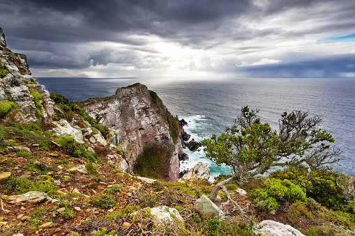 Nature Reserve「Africa, South Africa, Western Cape, Cape Town, Cape of good hope National Park, Cape Point」:スマホ壁紙(19)