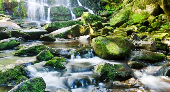 岩「ネルソンの滝」:スマホ壁紙(1)