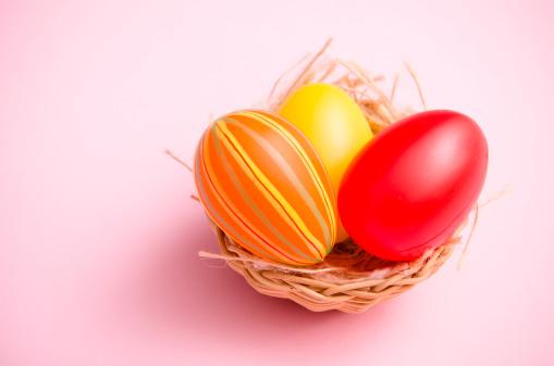 Easter Basket「Painted easter egg in animal nest on colored background」:スマホ壁紙(6)