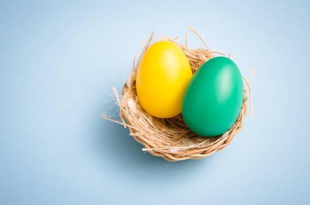 Painted easter egg in animal nest on colored background:スマホ壁紙(壁紙.com)