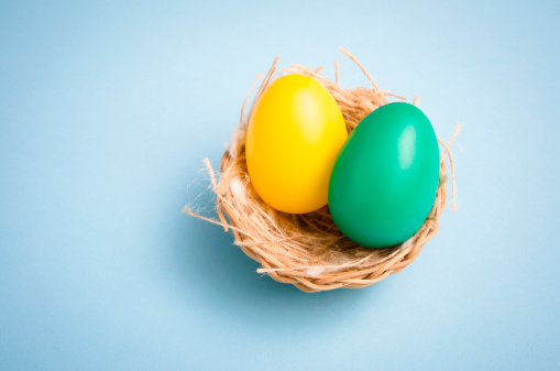 Easter Basket「Painted easter egg in animal nest on colored background」:スマホ壁紙(14)