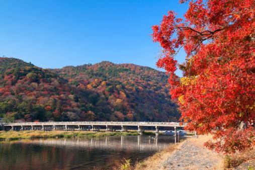 秋+京都「Arashiyama and Togetsukyo in Bridge」:スマホ壁紙(16)