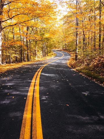 月「ニューハンプシャー州の秋の道」:スマホ壁紙(3)