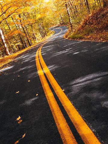 月「ニューハンプシャー州の秋の道」:スマホ壁紙(2)