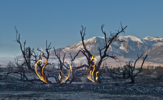 Deforestation「Desert scrub brush after a fire with flames montaged in, with Sierra Nevada mountains in background near Mono Lake, California, USA」:スマホ壁紙(4)