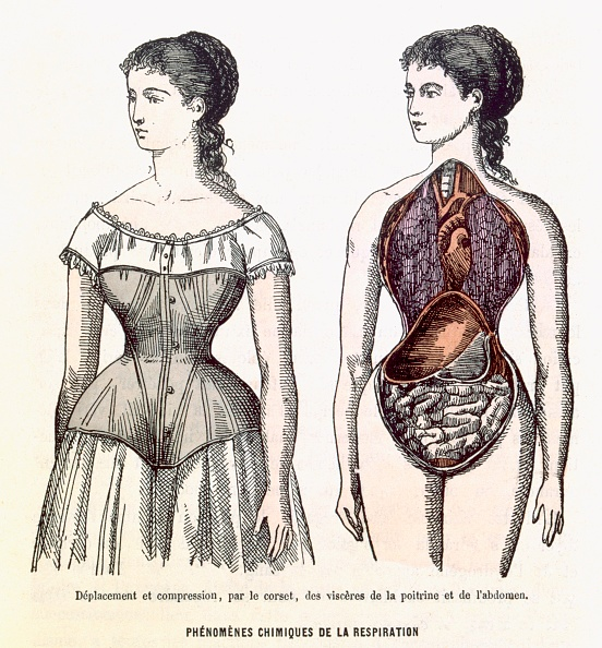 Medical Equipment「The Harmful Effects Of The Corset Phenomènes Chimiques De La Respiration」:写真・画像(13)[壁紙.com]