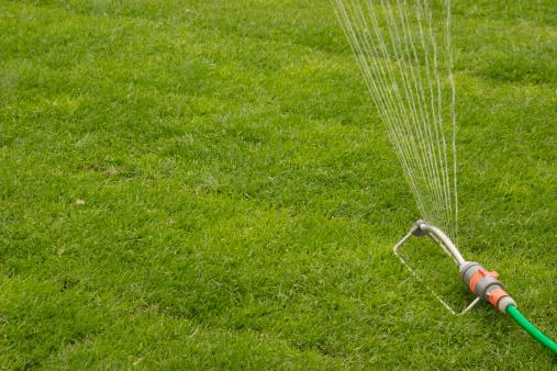 Hose「Sprinkler」:スマホ壁紙(3)