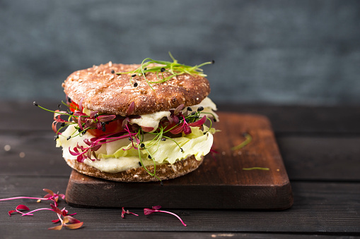 Veggie Burger「Veggie Burger, vegan, with salad, radish, tomato, rock chive」:スマホ壁紙(7)