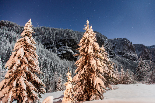 star sky「Winter landscape with mountain forest in Morzine, France」:スマホ壁紙(1)
