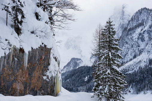 Dachstein Mountains「Winter landscape at Gosausee lake, Dachstein mountain in background, Austria」:スマホ壁紙(14)