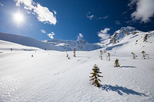 雪山「Winter landscape below Joffre Peak and Mount Matier near Pemberton, British Columbia, Canada.」:スマホ壁紙(5)
