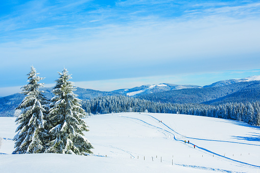Baden-Württemberg「Winter landscape at Schauinsland in Black Forest, near Feldberg, Germany」:スマホ壁紙(9)