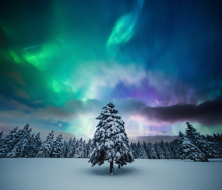 Woodland「Winter Landscape With Northern Lights」:スマホ壁紙(2)