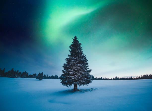 Winter Landscape With Northern Lights:スマホ壁紙(壁紙.com)