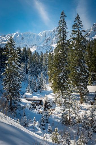 Austria「winter landscape in Austria」:スマホ壁紙(13)
