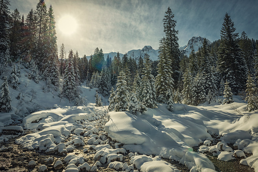 Back Lit「winter landscape in Austria」:スマホ壁紙(1)