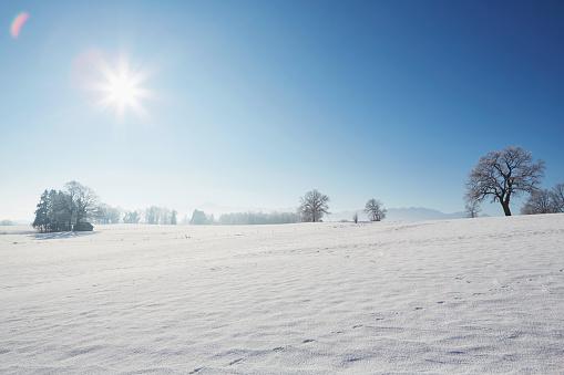 田畑「winter landscape with sunshine and snow」:スマホ壁紙(5)