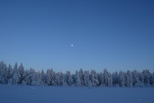 Finnish Lapland「Winter Landscape Twilight」:スマホ壁紙(11)