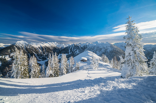 Ski Resort「winter landscape with snowcapped mountains and trees」:スマホ壁紙(14)