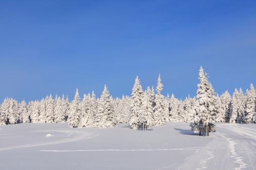 雪山「冬の風景」:スマホ壁紙(0)