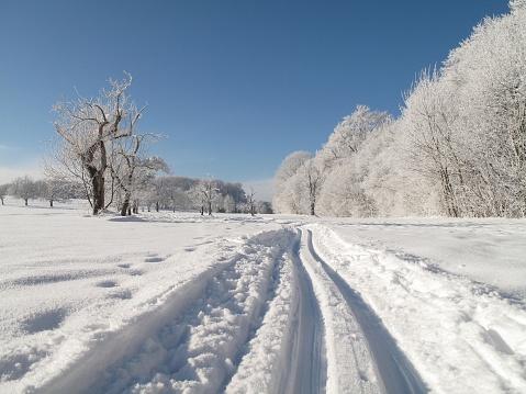 スキー「冬の風景」:スマホ壁紙(16)